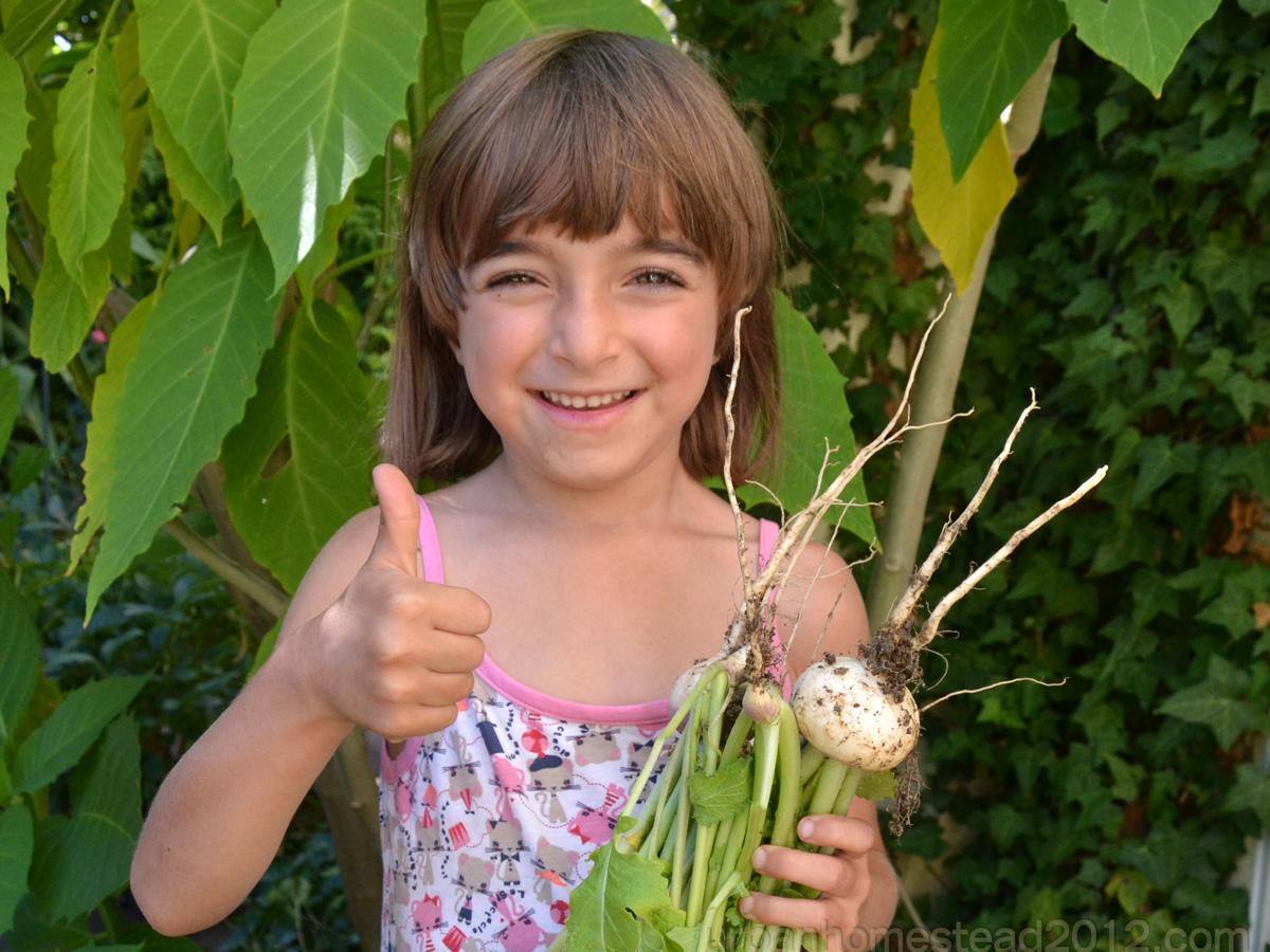 Turnip pickin
