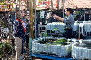 Roy Nordblom explains the Aquaponics system at the Middlebrook Center.