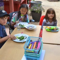 The campers enjoy a delicious and healthy lunch that has been freshly harvested.