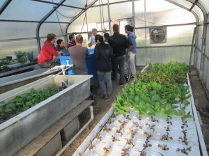 Students from Lincoln High School in San Jose learning about the aquaponics system.