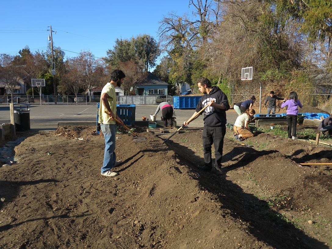 Downtown College Prep gets a new teaching garden   Middlebrook ...