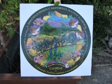 Grassland Bio-board