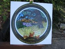 Oak Woodland Bio-board