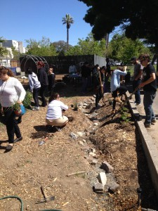 Students planting the riparian plant community