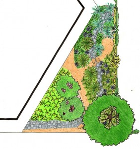 design graph by CNGF school garden design team
