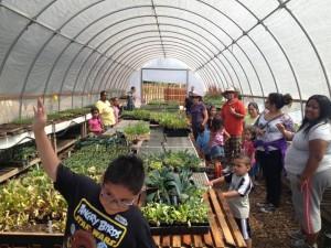 veggielution farm field trip